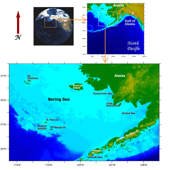 Bering Sea Ice Expedition 2008 Maps