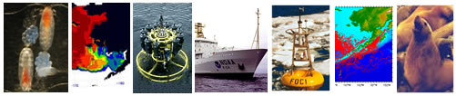 Array of photos depicting EcoFOCI work: copepods, ice map Bering Sea, CTD data collection, NOAA Ship Ron Brown, FOCI mooring in icy sea, drifter map, steller sea lion with pup